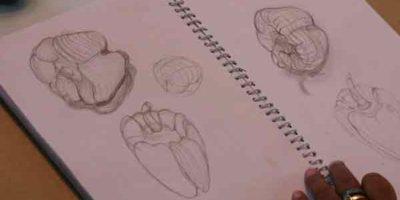 Students-assignments-in-Sampratishta-School-of-Fine-Arts-03